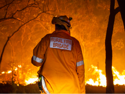 Back of rural fire worker facing flames